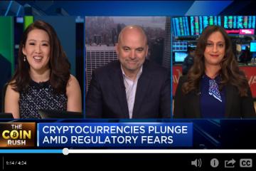 Cryptocurrencies plunge